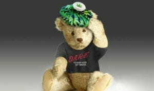 Medical Marijuana and Migraine
